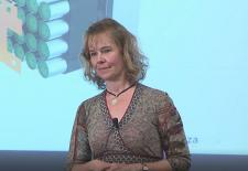 Christina Lampe-Onnerud, Cadenza Innovation